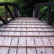 Wooden bridge — Stock Photo #6212738