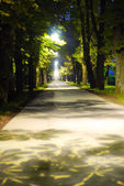 Path between night and daylight — Stock Photo
