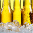 Bottles of cold and fresh beer with ice — Stock Photo #5716660