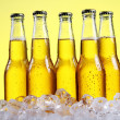 Bottles of cold and fresh beer with ice — Stock Photo #5716678