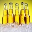 Bottles of cold and fresh beer with ice — Stockfoto