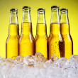 Bottles of cold and fresh beer with ice — Stock Photo #5716682