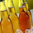 Bottles of cold and fresh beer with ice — Stock Photo #5716688