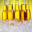 图库照片: Bottles of cold and fresh beer with ice