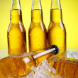 Bottles of cold and fresh beer with ice — Stock Photo #5716696