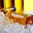 Bottles of cold and fresh beer with ice — Stock Photo #5716700