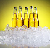 Bottles of cold and fresh beer with ice — Stock Photo