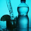 Silhouette of bottle and glass — Stock Photo #6070767