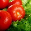 Fresh and wet tomatoes - Foto Stock