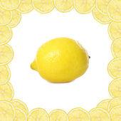 Fresh yellow lemons on white background — Stock Photo