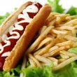 Stock Photo: Fresh and tasty hot dog with fried potatoes