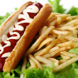 Fresh and tasty hot dog with fried potatoes - Stock Photo