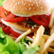 Big and tasty burger with fries — Stock Photo #6258823
