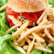 Big and tasty burger with fries — Stock Photo #6258825