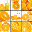 Collage of different oranges — Stock Photo