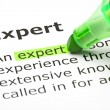 'Expert' highlighted in green - Stockfoto