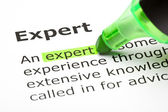 'Expert' highlighted in green — Foto de Stock
