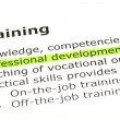 Professional development — Foto de Stock