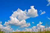 Cumulus clouds in blue sky over a meadow — Stock Photo