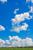 Blue sky over green field — Stock Photo