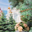 Stock Photo: Bouquet on fir branches