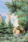Bouquet on a fir branches — Stock Photo