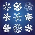 Snowflake set — Stock Vector #5414273