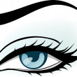 Royalty-Free Stock Vector Image: Woman blue eye illustration