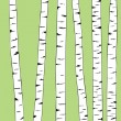 Royalty-Free Stock Vectorielle: Birch trunk trees background