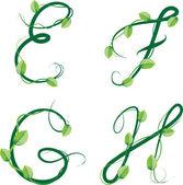 The green ecological summer alphabet — Stock Vector