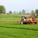 Tractor spraying green field on farm — Stock Photo