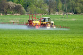 Tractor spraying green field — Stock Photo