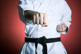 Karate punch — Stock Photo