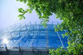 Business verde — Foto Stock