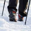 Nordic walking in winter — Stock Photo #6647883