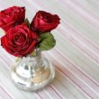 Roses — Stock Photo #5924073