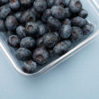 Blueberries — Stock Photo #5924358