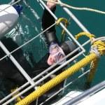 Scuba Diver — Stock Photo #5924760