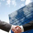 Business hand shake — Stock Photo #5925742