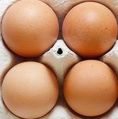 Ovos — Fotografia Stock