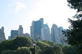 Central Park — Stock Photo