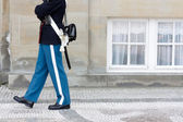 Royal Danish Guard — Stock Photo