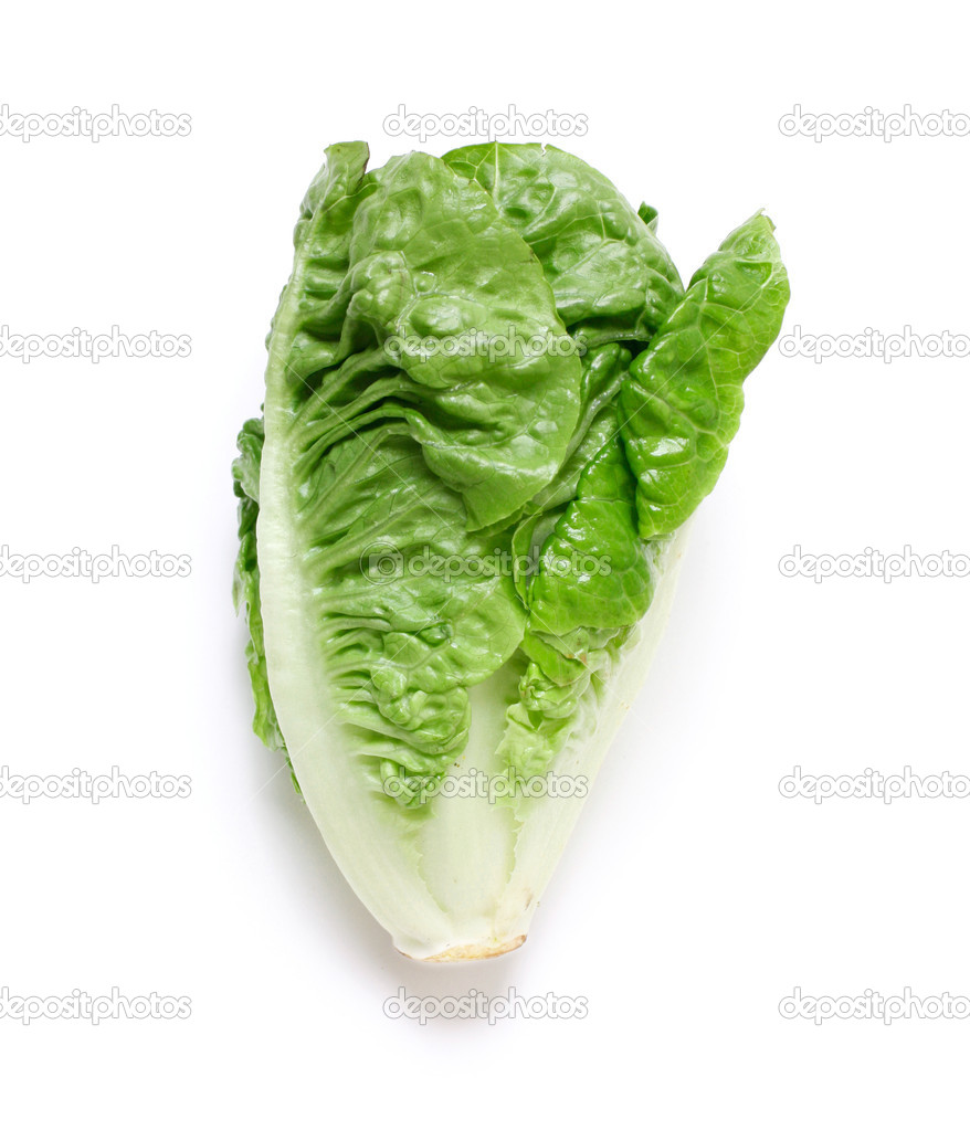 Romaine salad isolated on white — Stock Photo #5922672
