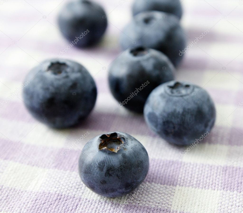Blueberries photographed in a studio  Stock Photo #5925669