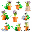 Stock Photo: Gardening background