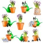 Gardening background — Stock Photo