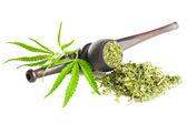 Cannabis — Foto Stock
