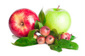 Apples fruits — Foto Stock