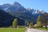 Düz yol dağlara — Stok fotoğraf