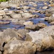 Wooded stream with many rocks — Stock Photo